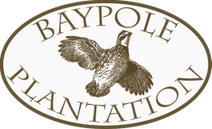 Quail Hunting Logo of Baypole Plantation